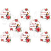 Mintás barkácsfilc - tradicionális karácsony - Áldott ünnepeket! vörösbegy