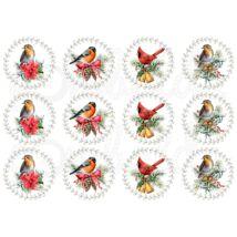Mintás barkácsfilc - tradicionális karácsony - madarak körben