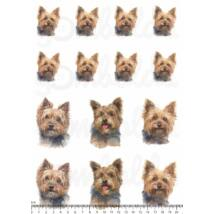 Mintás barkácsfilc - yorki kutyusok - vegyes méret