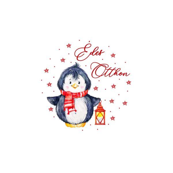 Mintás barkácsfilc - Winter Fun hímzőkeretbe - pingvin